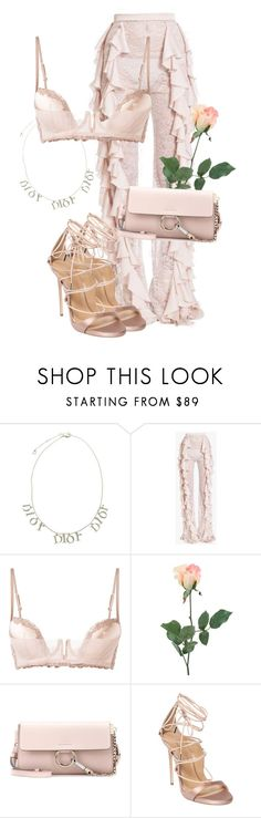 """""""Untitled #3798"""" by xirix ❤ liked on Polyvore featuring Christian Dior, Balmain, La Perla, INC International Concepts, Chloé and Dsquared2"""