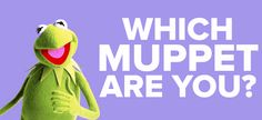 QUIZ: Which Muppet Are You? HA! I got that old guy who is always making fun of them :) Waldorf. I can sooo see this:)!