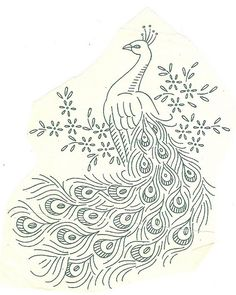 peacock vintage late 50s by Sandra Rose, via Flickr