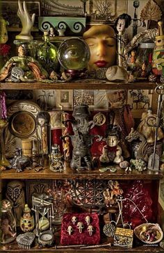 Curiosities by Jeff Knight Potter