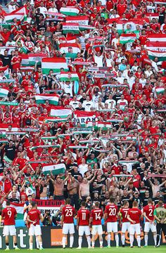 Hungary players and supporters celerbate winning the group F and going through…