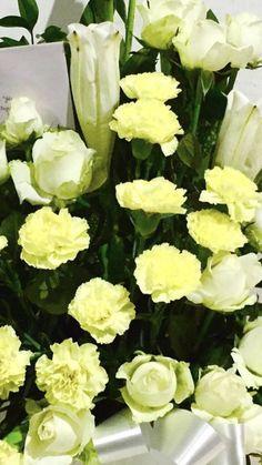 Yellow Carnations, Mini Carnations, White Carnation, Yellow Flowers, Hawaiian Flowers, Peach Flowers, Cream Flowers, Exotic Flowers, Tropical Flowers