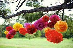 Mexican pom poms