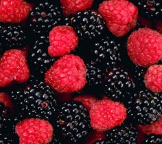 Black & Red Mulberry