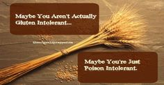Maybe-You-Are-Not-Gluten-Intolerant.-Maybe-You-Are-Poison-Intolerant.