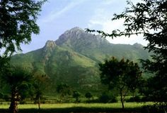 Arunachala with Green Foliage - Sri Ramana Maharshi Pakistan Bangladesh, Ramana Maharshi, Do What Is Right, Pilgrimage, Mystic, Places To Visit, Old Things, Journey, In This Moment