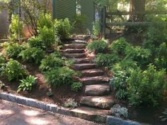 landscaping ideas for slopes   landscaping ideas backyard slopes   Improve your landscape this fall ...