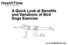 The classic core and spine stabilization exercise, bird dog, has many benefits. Here's a glimpse of the advantages and variations in bird dogs exercise. Bird Dog Exercise, Daily Exercise, Core Exercises, Benefits Of Exercise, Core Muscles, Hard Work, Workout Programs, Cook, Gray