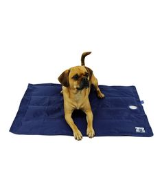 Look at this Body Glove Body Glove Cooling Pet Mat on #zulily today!