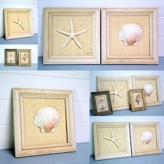 shell wall art