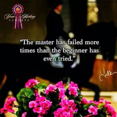 """The master has failed more times than the beginner has even tried"""