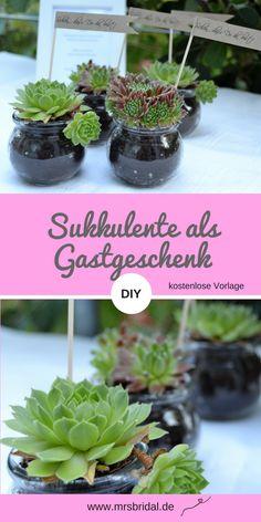 Partys, Greenery, Wedding Inspiration, Freebies, German, Weddings, 10th Wedding Anniversary, Small Succulent Plants, Native Plants