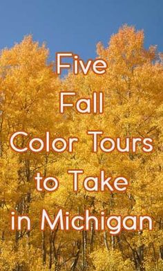 Michigan Fall Color Tours