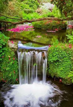 Waterfall Pool, Devon. England.
