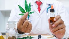 Scientists discover two new cannabinoids: Tetrahydrocannabiphorol (THCP), is allegedly 30 times more potent than THC. Cannabidiphorol (CBDP) is a cousin to CBD. Both demonstrate how much more we can learn from studying marijuana into the future. Scientific Reports, Discover Magazine, Mass Spectrometry, Endocannabinoid System, Weed Edibles, Different Feelings, Fatty Liver, Allegedly, Medical Advice