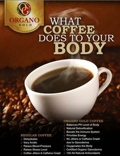 Organo Gold worlds leading Coffee and Tea provider enriched with Organic Ganoderma mushrooms, Bringing the treasures of the earth to the people of the world Coffee Jitters, Healthy Gourmet, Healthy Drinks, Change Your Life, Mocca, Coffee Drinks, Coffee Cups, Coffee Time, Ottawa