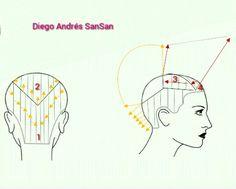 Diagrama corte bob YouTube Andrés SanSan
