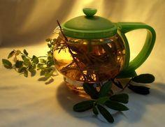 Best Tea for Hangover - 5 Herbal Recipes! Best Tea, High Tea, Drinking Tea, Smoothie Recipes, Tea Time, Health And Wellness, Tea Pots, Herbalism, Vegan Recipes
