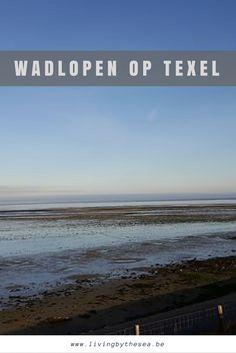 Benieuwd naar wat wadlopen precies is? Ik neem je graag mee naar Texel, een van de Waddeneilanden van Nederland voor een wadexcursie.