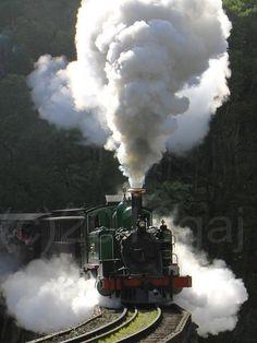 Puffing Billy Steam Train, Victoria, Australia by glenn anthony johns Locomotive Diesel, Steam Locomotive, Old Steam Train, Train Art, Old Trains, Victoria Australia, Steam Engine, Train Tracks, Melbourne Australia