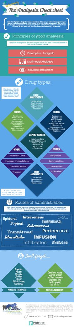 veterinary pain & analgesia cheat sheet infographic