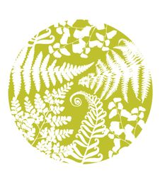 Fern Species Collection • 2011   por shawnanonna (Nonna Illustration & Design)