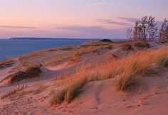 Pure Michigan... the dunes