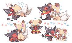 Litten x Rockruff Pokemon Incineroar, Pokemon Ships, Pokemon Comics, Pokemon Fan Art, Pikachu, Pokemon Stuff, Chibi, Cute Pokemon Wallpaper, Original Pokemon