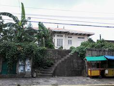 the ruins in calle rizal Classic Architecture, Plants, Classical Architecture, Flora, Plant