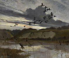 Evening flight Sir Peter Scott