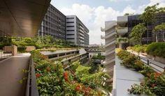 「Khoo Teck Puat Hospital」の画像検索結果