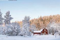 Puijo Kuopio 28.12.2014