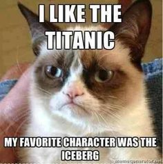 My favorite character was the iceberg.