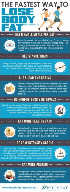 Infographic: The 7 Fastest Ways To Lose Body Fat - DesignTAXI.com