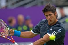 Fernando Verdasco ‹ TennisPhotoWorld.com Fernando Verdasco, You Look Like, Tennis Players, Tennis Racket, Sneakers Nike, Guys, Image, Nike Tennis, Sons