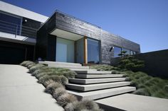 cantilevered concrete steps for entry stairway, modern landscape design / Grounded Modern Landscape Architecture