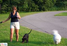 Dog walking is better than dieting. Here's proof! Results from several dog walking research studies + How much you need to walk your dog to lose weight. Vs Go, Dog Safety, Health And Fitness Tips, Dog Walking, Easy Workouts, Good Times, Your Dog, Lose Weight, Puppies