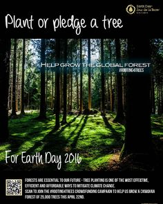 22/04/2016 Earth Day / Día del Planeta Tierra  You want to figth Climate Change on Earth Day? Help Earth Day Canada grow the global forest! Join Earth Day Canada's #rooting4trees campaign and together we'll commit to planting 25000 legacy trees for Earth Day's 25th Anniversary in 2016.  #reduce #earth #earthdaycanada #earthday2016 #green #recycle #sustainable #sustainability #sostenible #sostenibilidad #sostenibilità #redpect #respeto #respeta #planet #planeta #eco #tierra #tierramia #verde…