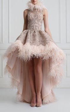 Lolitta Feathered Gown