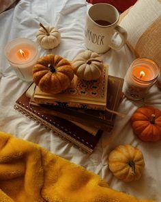 Samhain, Autumn Flatlay, Relaxing Rain Sounds, Autumn Instagram, Autumn Scenes, Autumn Cozy, Autumn Aesthetic, Best Seasons, Hello Autumn