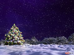 natale gif christmas glitter 53.jpg -  immagini natale gif christmas glitter images Myspace Orkut Google Blogger Wordpress Flickr Yahoo blog Libero Twitter Facebook Msn Aol Your Site Blog Dmoz,risorseutili immagini personal space images natale gif christmas glitter: