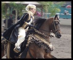 Love to watch the Arabian costume events Arabian Horse Costume, Horse Costumes, Arabian Costumes, Arabian Horses, Horse Gear, Horse Tack, Medieval Horse, Make Her Smile, Bee Art