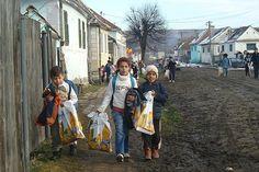 Mici bucurii pentru copiii dintr-un sat izolat din Sibiu Romania, Street View, Ants