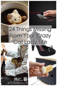 24 Genius Products Missing From Your Cat Lady Life Cat Lover Gifts, Cat Gifts, Cat Lovers, Crazy Cat Lady, Crazy Cats, Cat Toilet Training, Cat People, Training Your Dog, Cool Cats