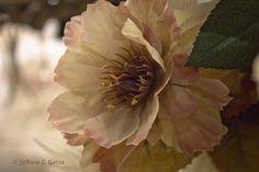 Wedding Flower - http://herbigday.net/wedding-flower-7/