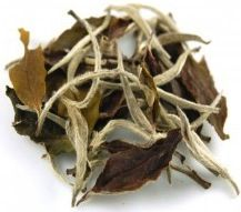 Barista Banter: Just My Cup of Tea -- White Tea Leaves