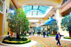 the beau rivage in biloxi, mississippi.