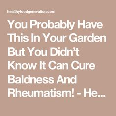 You Probably Have This In Your Garden But You Didn't Know It Can Cure Baldness And Rheumatism! - Healthy Food Generation
