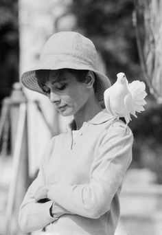 Audrey Hepburn with a dove perched on her shoulder. (Photo by Terry O'Neill)
