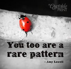 Daily Quote - You too are a rare pattern. - Amy Lowell #quote #ladybug #individuality #bestquotes